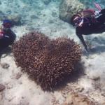 ハートサンゴで記念撮影